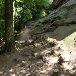 Steiniger Fußweg zur Chateau de Windstein